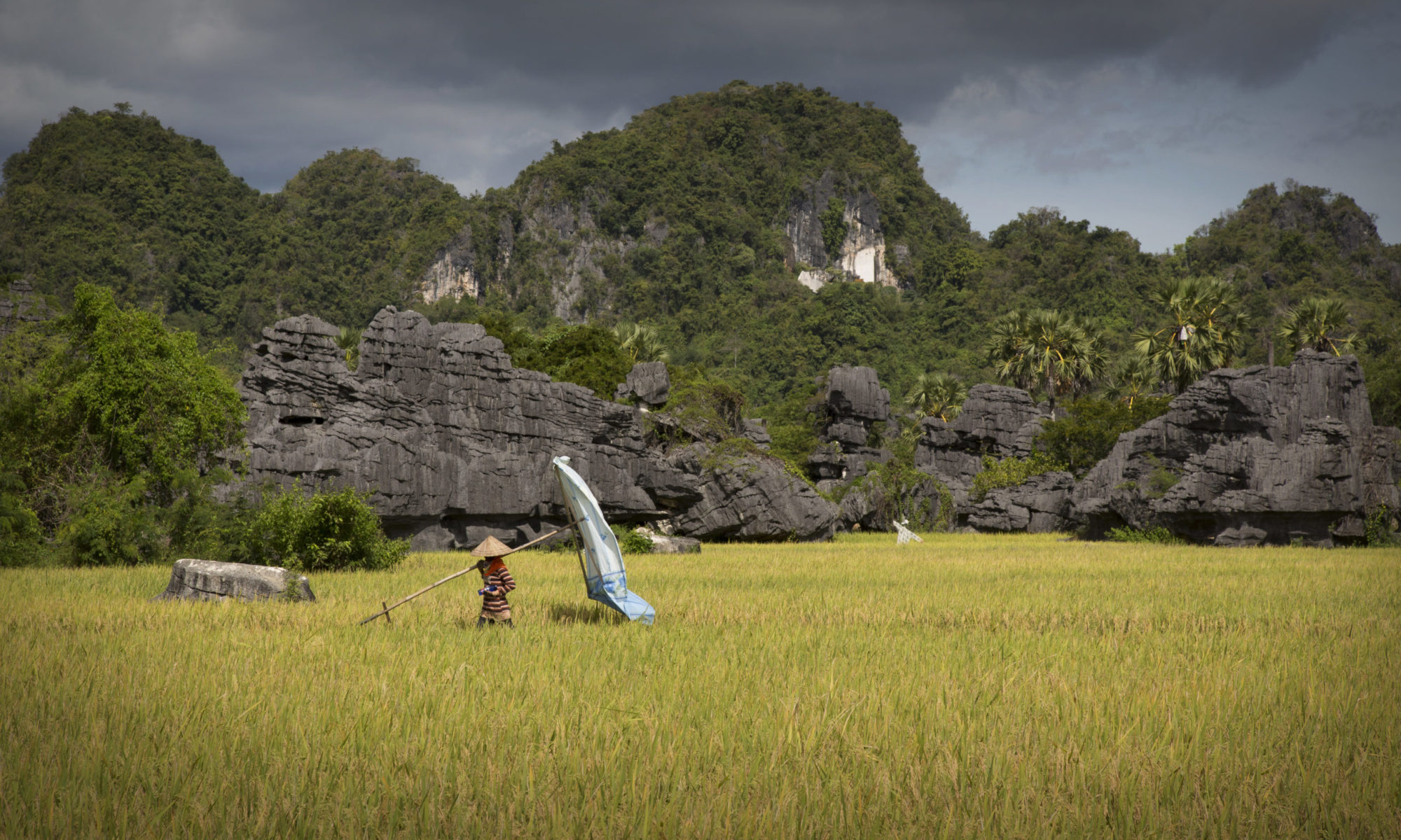 Pangkey Fotografie